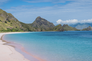 Pink Beach in the Komodo National Park area